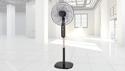 LUXURY FAN
